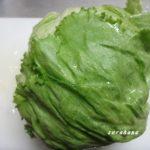 食費節約のポイント 目から鱗な野菜の保存方法