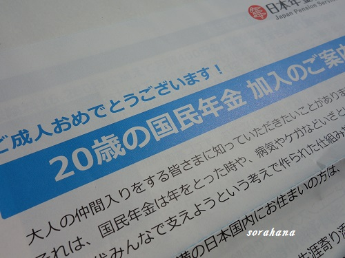 DSC02989