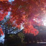 12月の北鎌倉【円覚寺】の紅葉は降り注ぐ美しさ